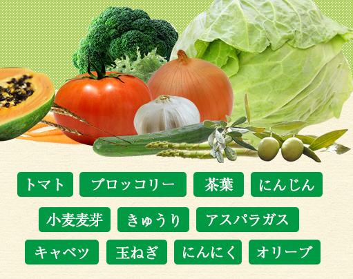 めっちゃたっぷりフルーツ青汁に入っている野菜成分